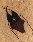 Εικόνα από Γυναικείο μαγιό lurex ολόσωμο με βαθύ άνοιγμα Μπορντώ